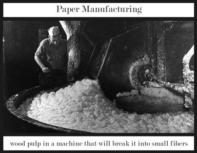 Wood Pulp Paper Manufacturing