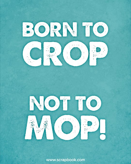 Born to Crop, Not to Mop