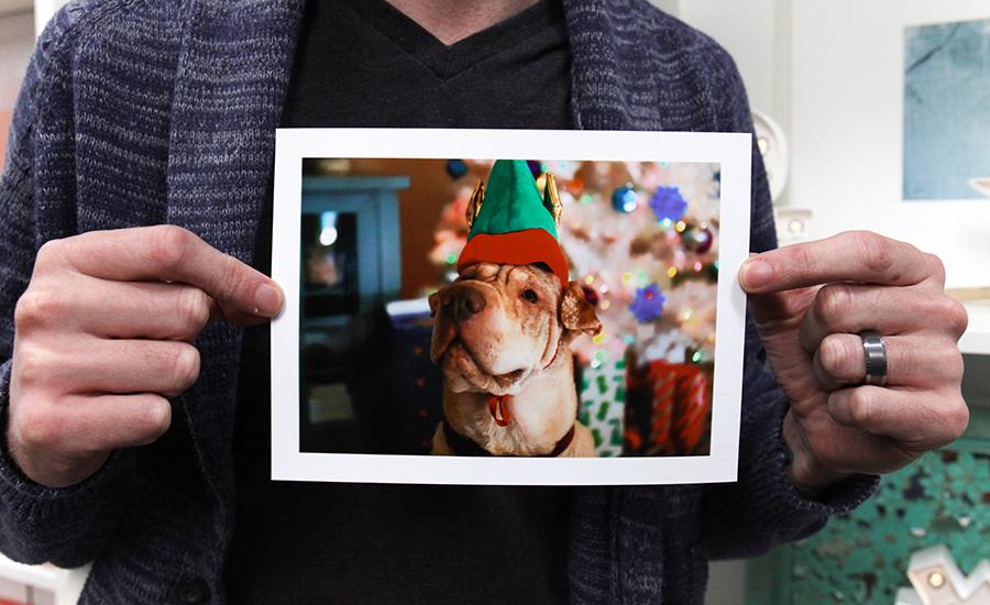 Recuerdos de Navidad - Perro