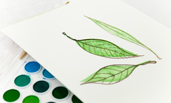 Art Therapy Benefits and History