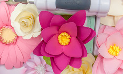 How to Make Paper Flowers for Celebrations
