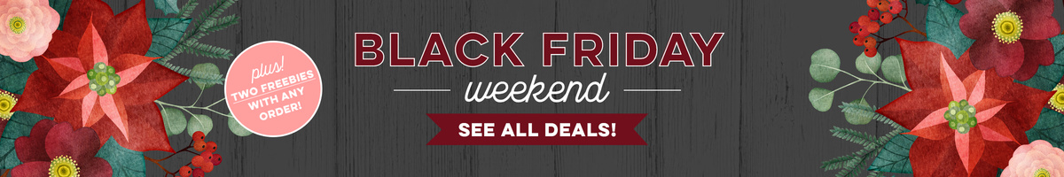 Black Friday Weekend + 2 Freebies
