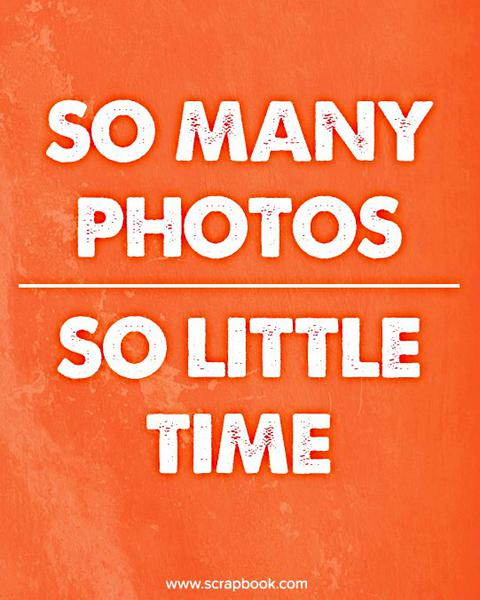Quote: So Many Photos...