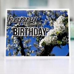 Happy Birthday - beautiful blooms - Card Inspiration
