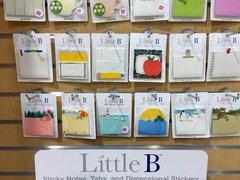 Little B CHA Winter 2016
