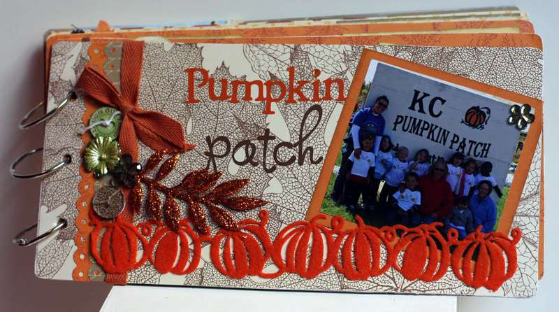 Pumpkin Patch Mini album