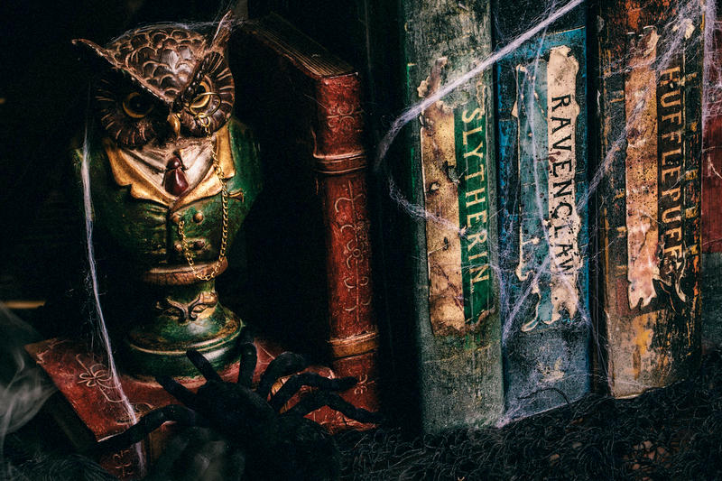DIY Harry Potter Potions for Halloween: Book Shelf