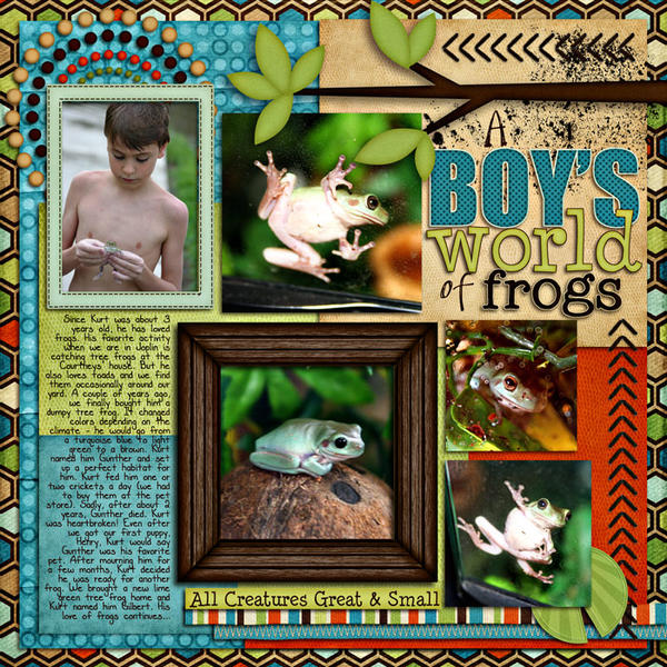 A Boy's World of Frogs