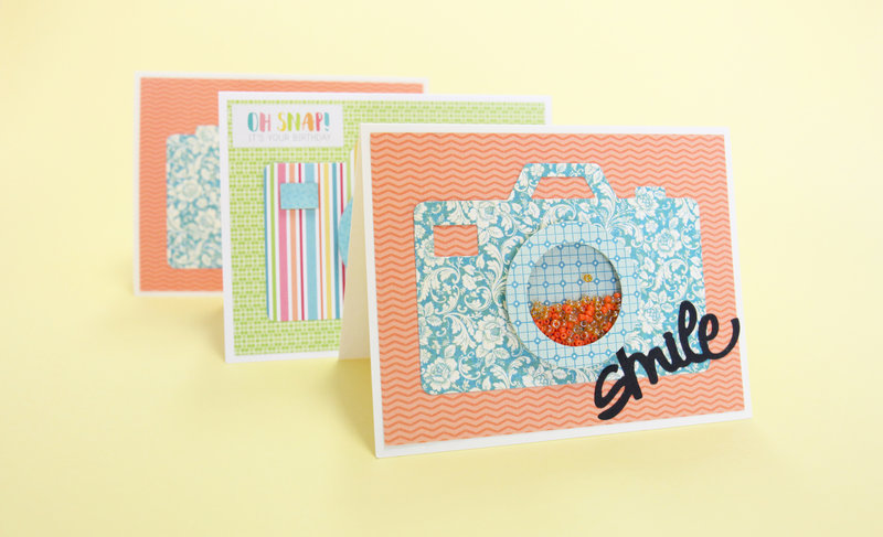 Picture Perfect Shaker Card
