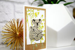 Cards for Any Occasion