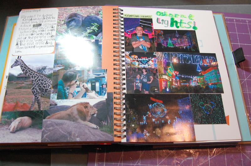 Alex's Disney Journal - Animal Kingdom & Osborne Lights