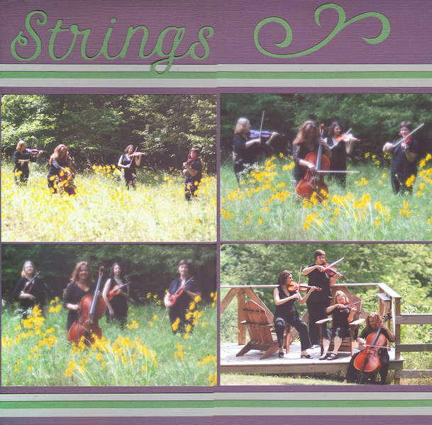 Woodland Strings 2