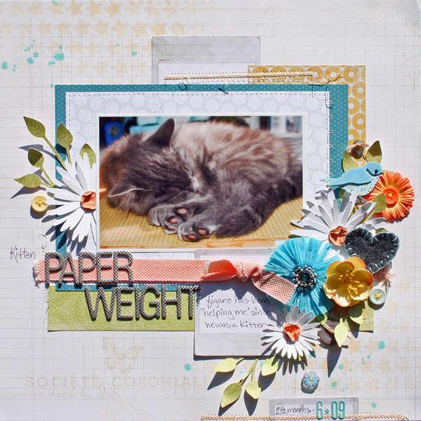 Kitten Paper Weight