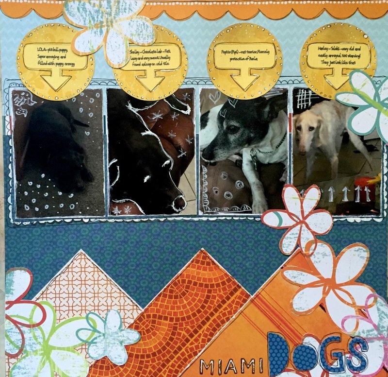 Miami Dogs