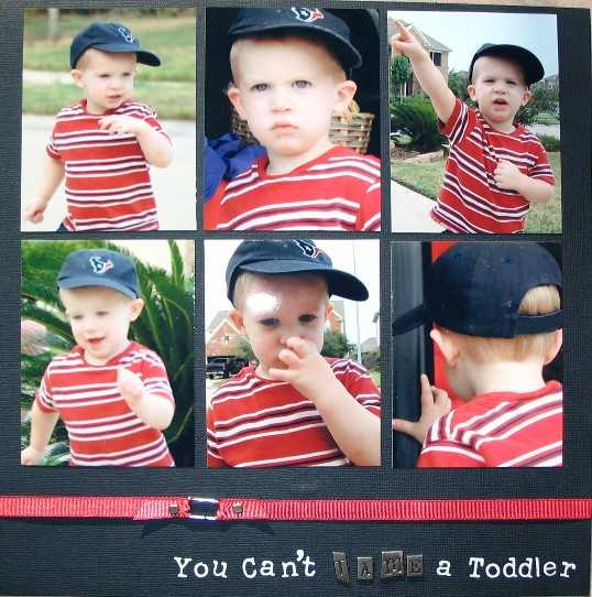 You Can't Tame a Toddler!