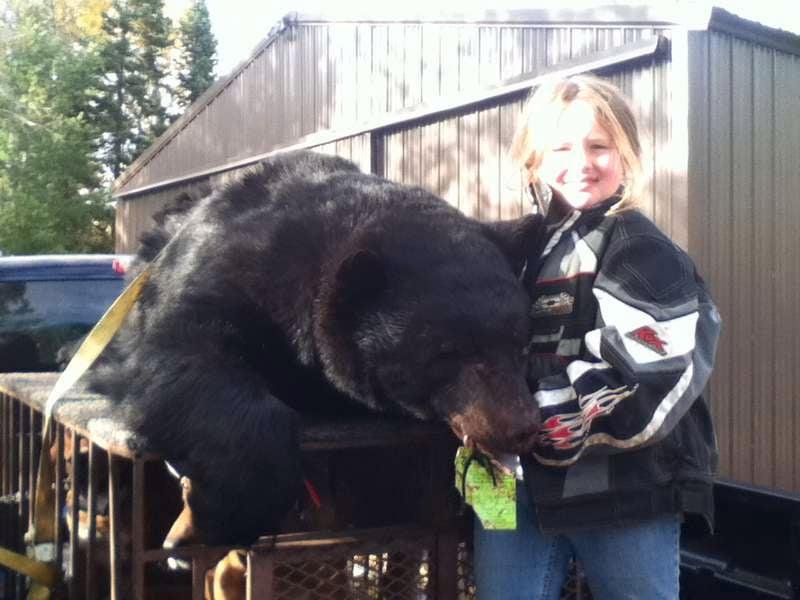 Lacey & 446 bear