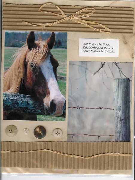 Button Horse
