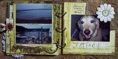 Maine Acrylic Album