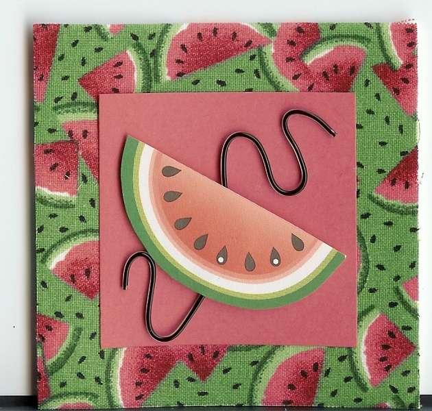 watermelon minibook