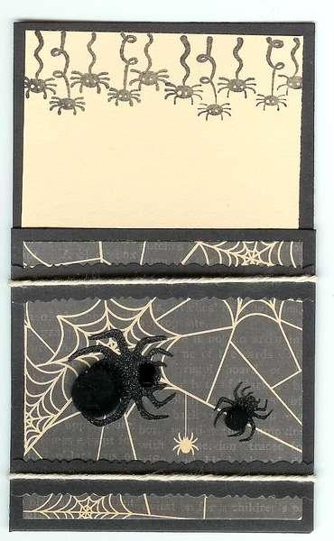 DCWV spider library pocket