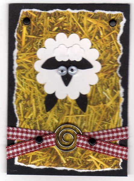 sheep atc