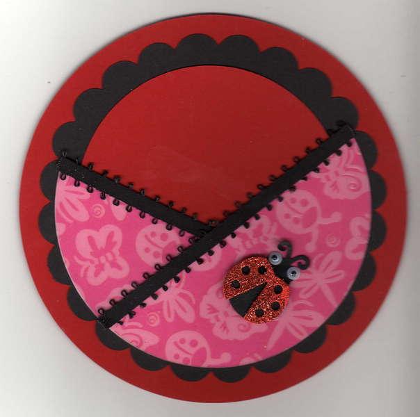 ladybud criss cross cd