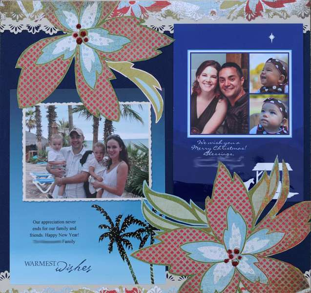 2009 Christmas Cards Blue Pointsettas