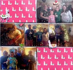 Christmas in Texas - Llamas