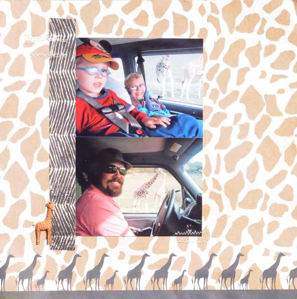 Giraffe - Drive thru zoo
