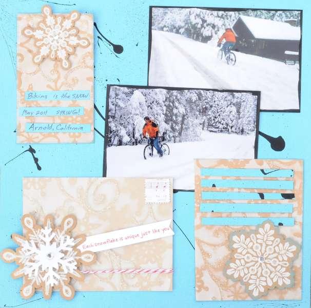 Snow Biking