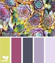 More colors i adore