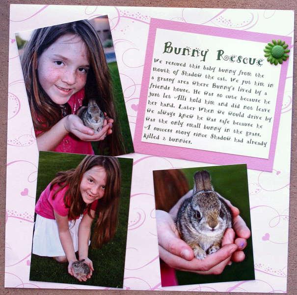 Disney - Bunny Rescue