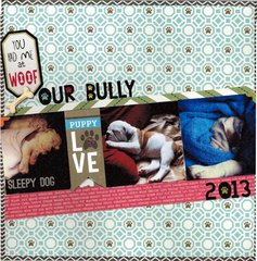 Our Bully *Queen & Co Pet*