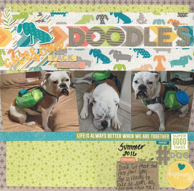 Doodle's Awesome Pack Pack