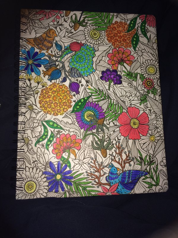 My Girl and I had so much fun playing with the new Hall Pass and Adult Coloring Products from AC