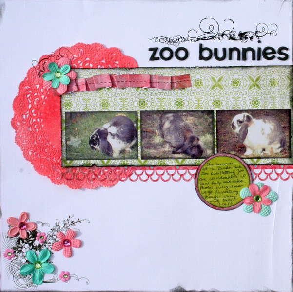 zoo bunnies