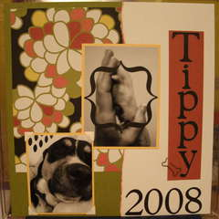 ~*~Tippy 2008~*~