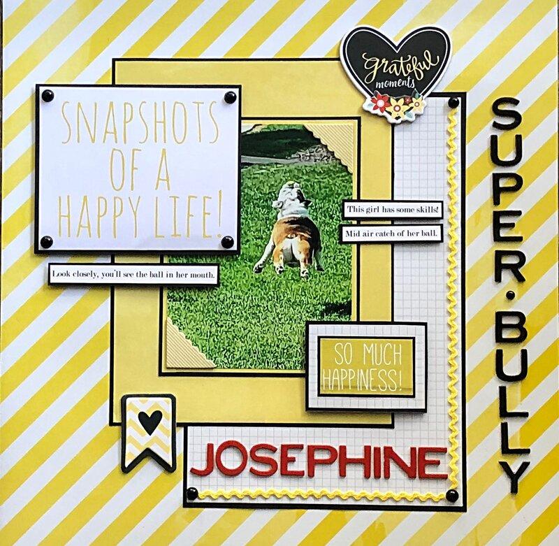 Snapshots of a happy life- Josephine 2020