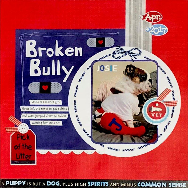 Broken Bully