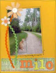Milo Kitty