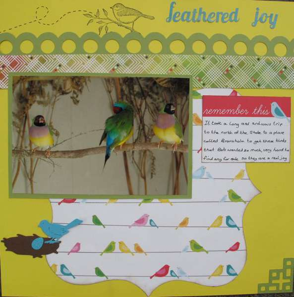 Feathered Joy