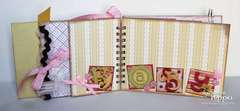 Sweet Baby Girl Mini Book