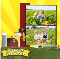 Iowa Strawberry Pickin'