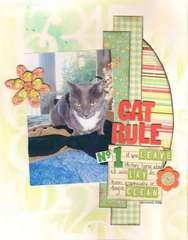 cat rule #1