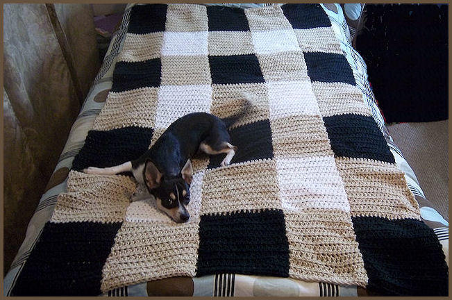 Twin Size, Plaid Crochet Blanket