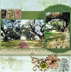 Oak Alley, Louisiana page 2