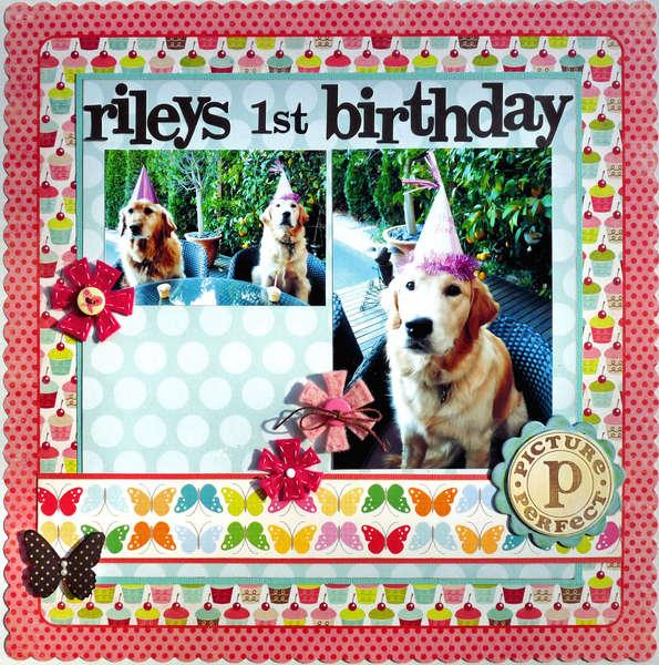 Rileys 1st Birthday
