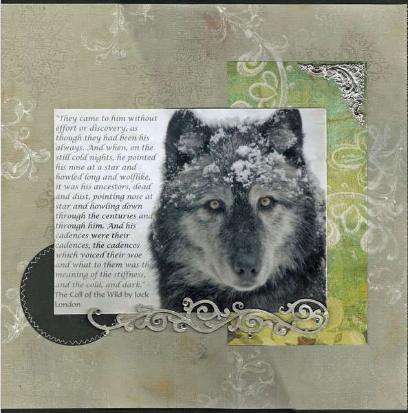 The wolves on Grouse Mountain page 2