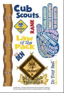 it takes two Cub Scout sticker