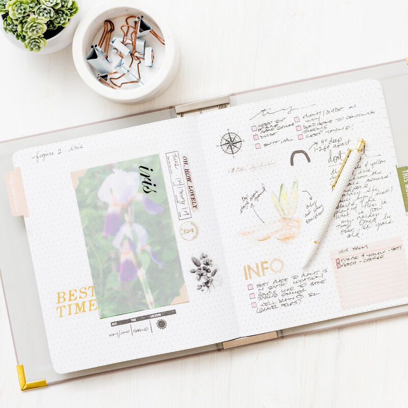 Garden Journal Storyline Chapters Layout